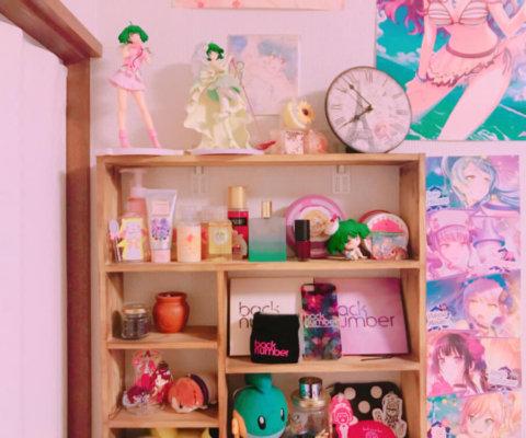 家でフィギュアなどを飾っている棚。壁美人6K×2でも十分止まっている。